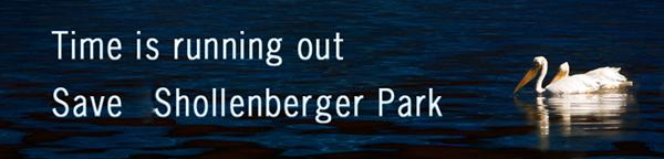 save_shollenberger