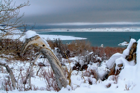 View-of-Mono-Lake---Winter
