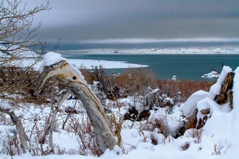 View-of-Mono-Lake---Winter