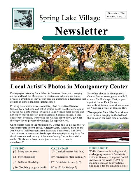 SLV Newsletter page 1 2014